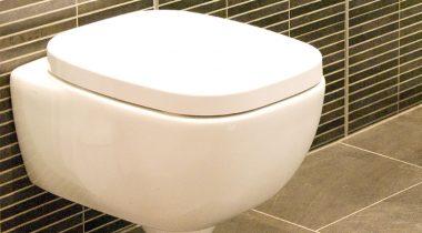 toilet_small